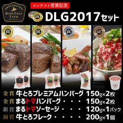 DLG2017セット