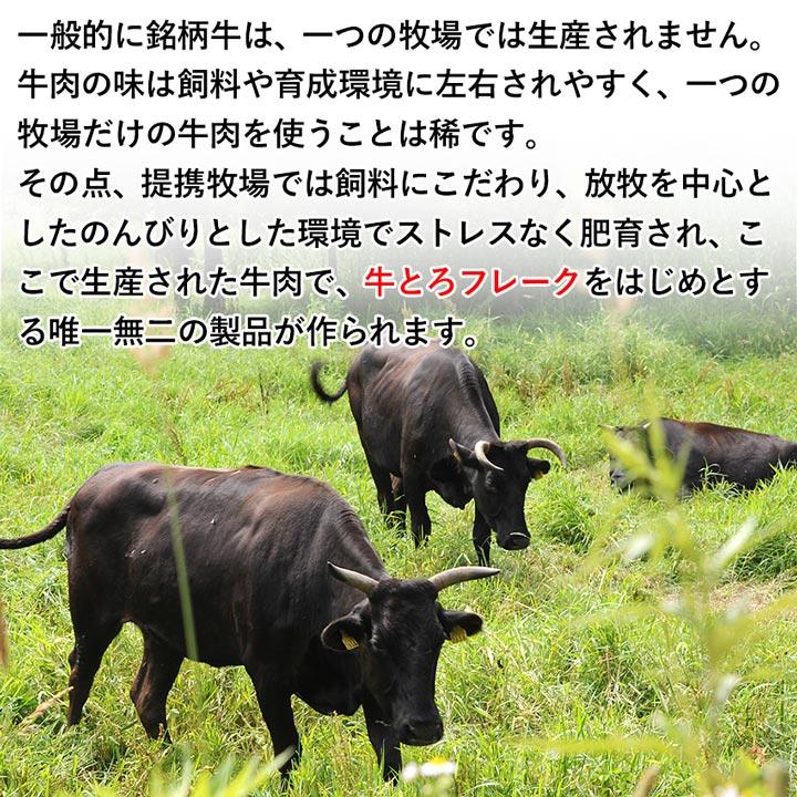 「牛とろ」をよりお手軽に 牛とろ5[ぎゅうとろファイブ]